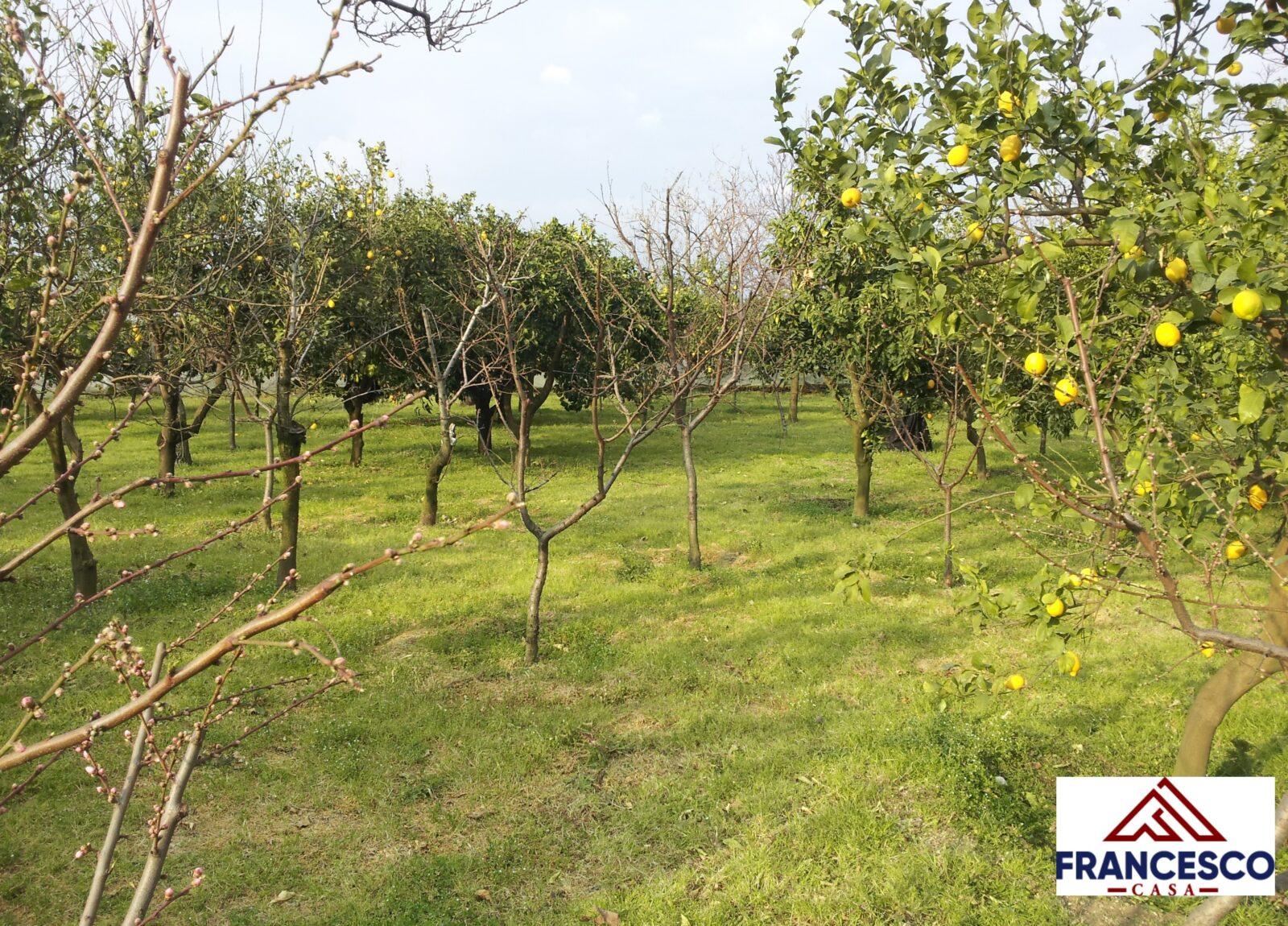 Terreno in vendita a Sant'Egidio del Monte Albino via Castello Troiano